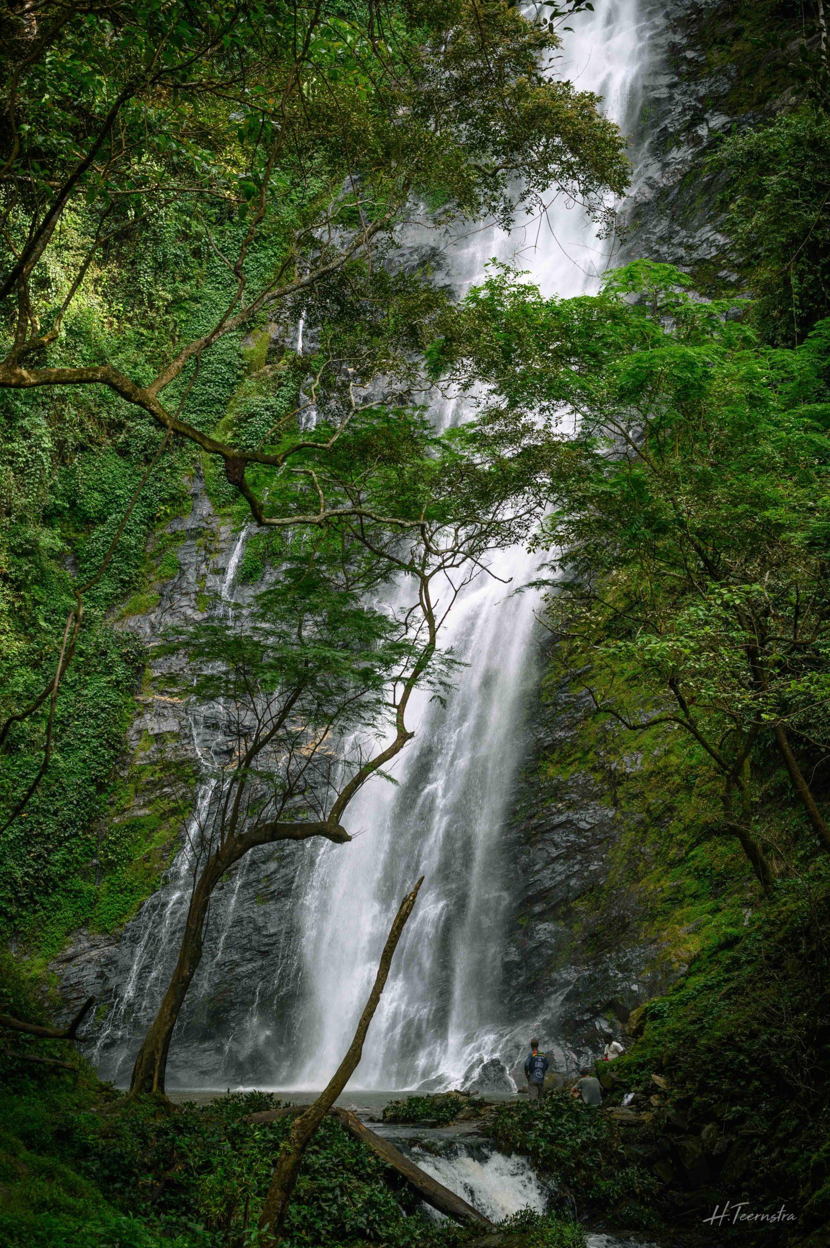 waterfall africa green